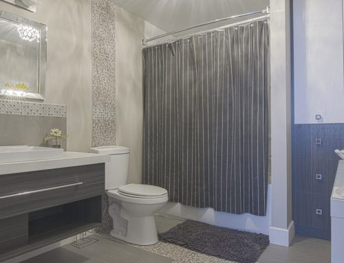Salle de bain, Delson